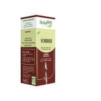 1 sorbier-bourgeon-bio-15-ml-herbalgem-400x300