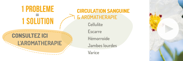 Aromatherapie solution circulation sanguine