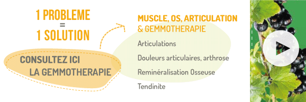 Gemmotherapie solution muscle os articulation