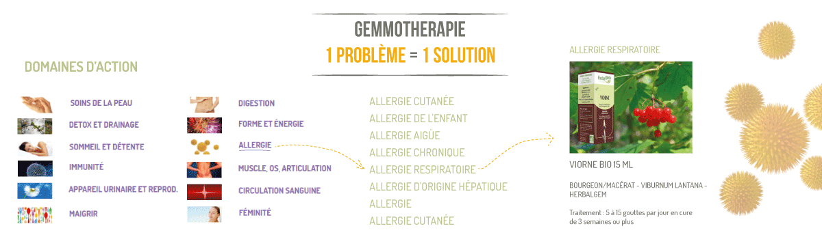 Gemmo 1 probleme 1 solution